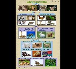 IV_TS_SCI_Types-of_animals