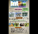 VII_SCI_Weather_Climate_Adaptations_Animals_Climate