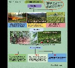 X_SOC_Agriculture